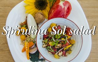 Spirulina colorful salad 5 essentia